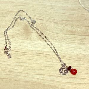 Cancer and ruby charm necklace